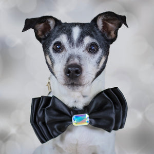Large Triple Layer Black Satin Bow for Dogs