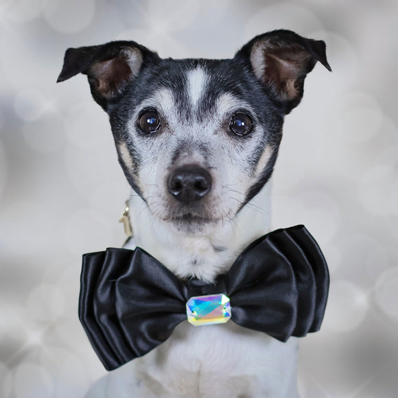 Large Triple Layer Black Satin Bow for Dogs with Medium Swarovski Crystal