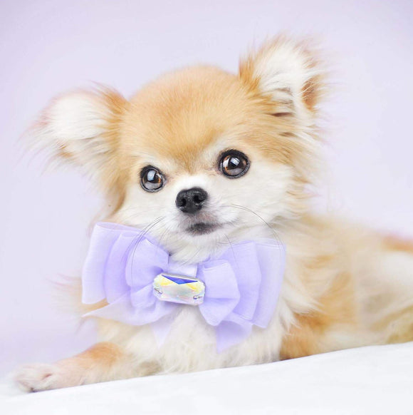 Lilac Organza Dog Bow with Large Swarovski Crystal