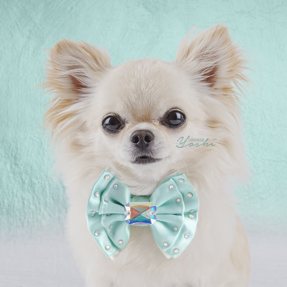 Tiffany Dreams Dog Bow Tie with Large Swarovski Crystal