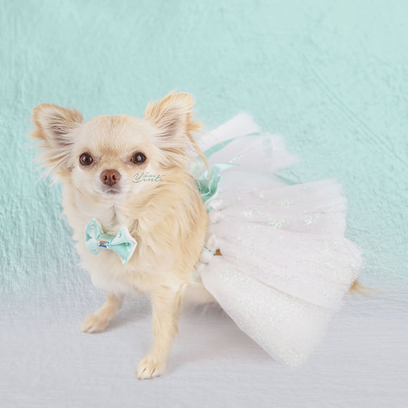 Tiffany Dreams Sparkly Dog Tutu