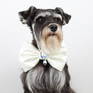 A Midsummer Night's Dream - Duke Theseus Dog Bow Tie