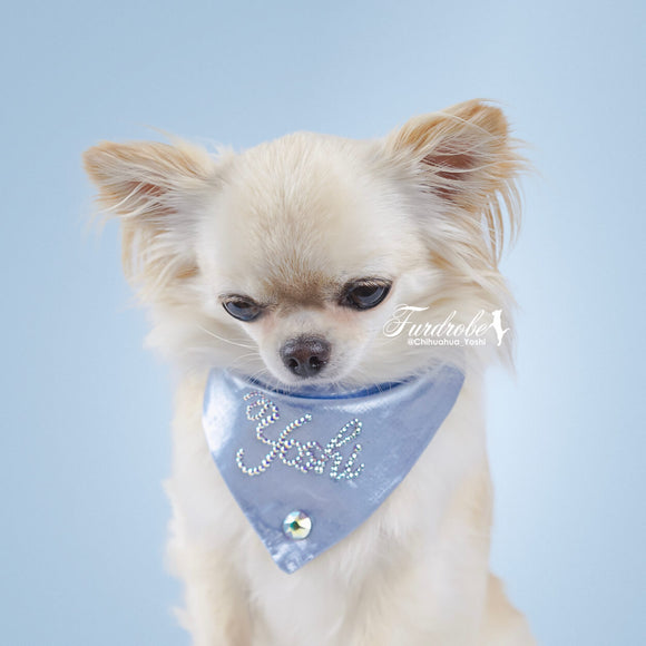 Small Blue Dog Bandana