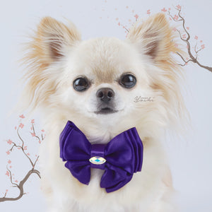 Sakura Purple satin butterfly dog bow with small Swarovski crystal