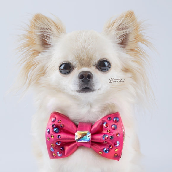 BCA hot pink reversible bow tie
