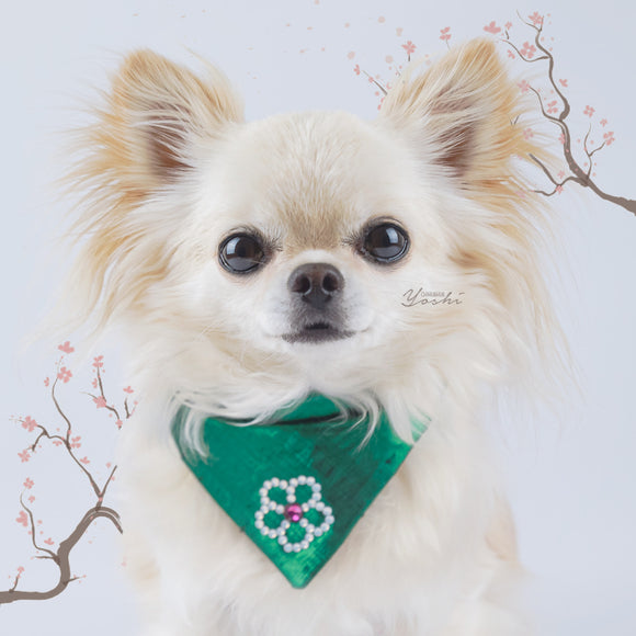 Sakura emerald dog bandana in small.