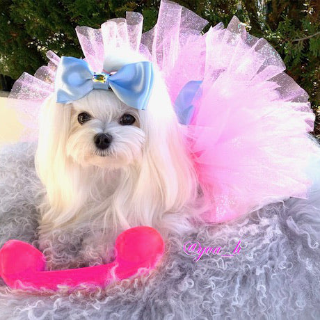 Pink Fairy Dust Dog Tutu with Matching Bow