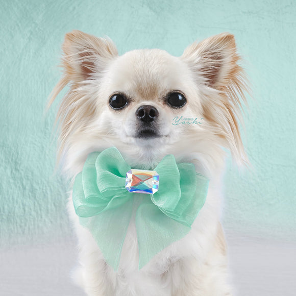 Tiffany Dreams Organza Dog Bow with Large Swarovski Crystal