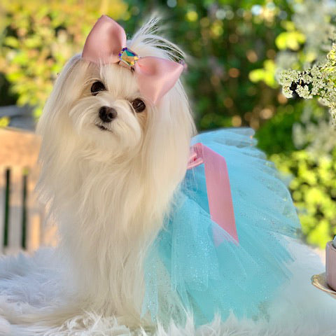 Blue Fairy Dust Dog Tutu