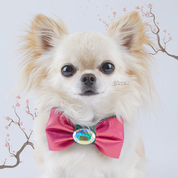 Pink/emerald green Sakura small dog bow tie