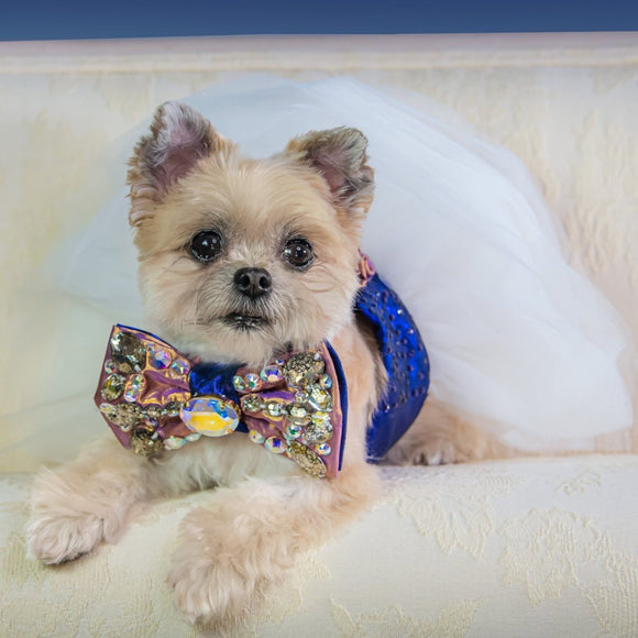 Sakura VIP Petit silk dog bow tie