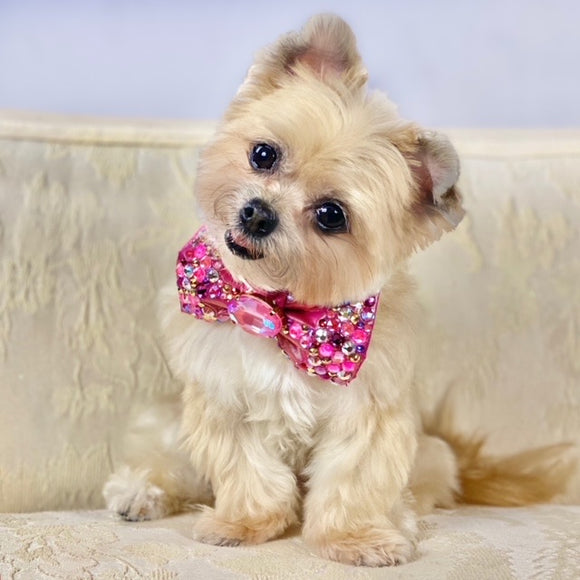 Hot Pink VIP Petite Dog Bow