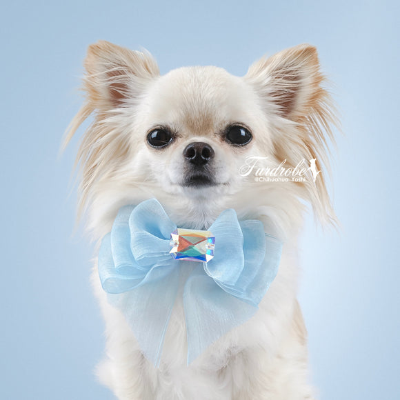 Blue Organza Dog Bow with Large Swarovski Crystal