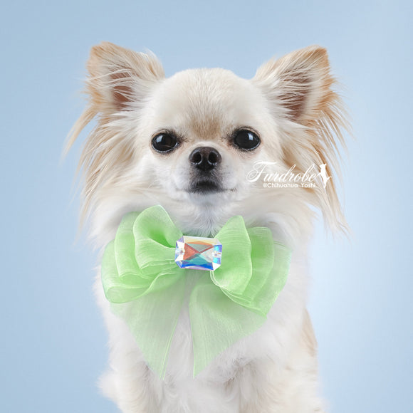 Green Organza Dog Bow with Large Swarovski Crystal