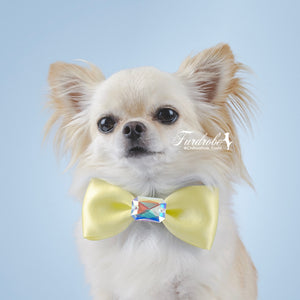 Yellow Satin Dog Bow Tie with Large Swarovski Crystal