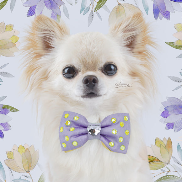 Primroses and Violets | Silk Reversible Bow Tie | Small | Heart Crystal