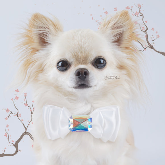 Sakura Love small triple satin dog bow with large crystal