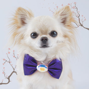 Sakura small silk dog bow in gold/purple