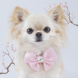 Sakura Pink organza butterfly dog bow with small Swarovski crystal
