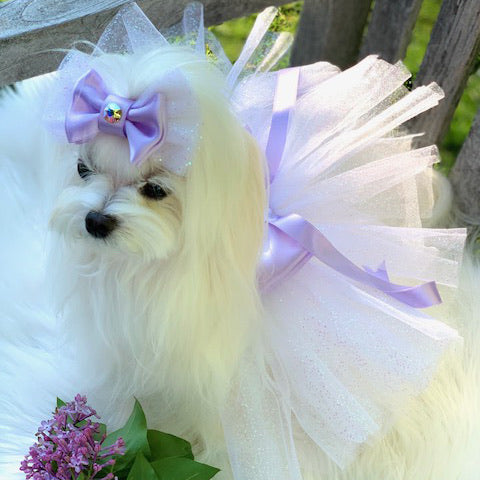 Lilac Fairy Dust Dog Tutu Set