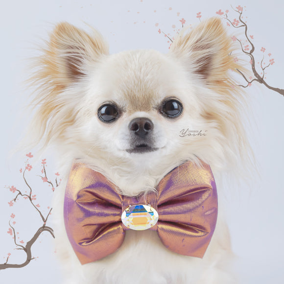 Gold/Purple Sakura large silk dog bow