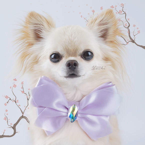 Sakura large lilac satin butterfly dog bow with large Swarovski crystal