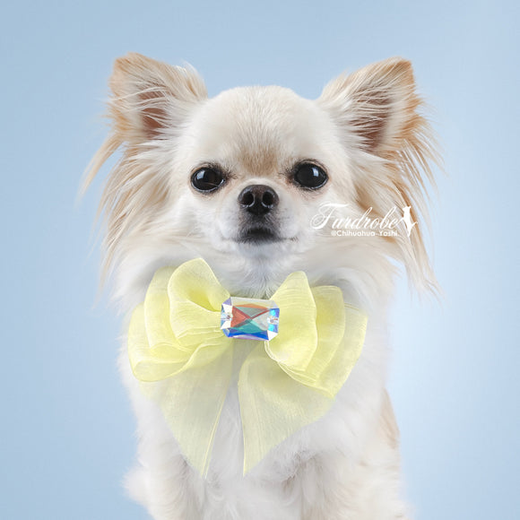 Yellow Organza Dog Bow with Large Swarovski Crystal