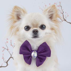 Sakura Patina purple organza butterfly dog bow with large crystal