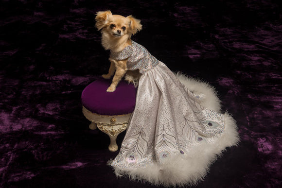 Peacock Ball Gown for Dogs