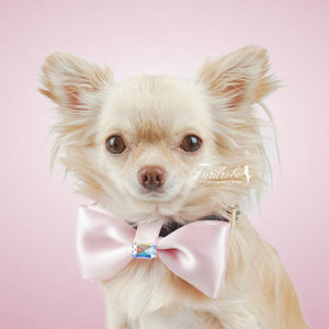 Satin Pink Small Dog Bow Tie