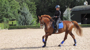 Managing a sharp horse in winter with Hayley Watson-Greaves