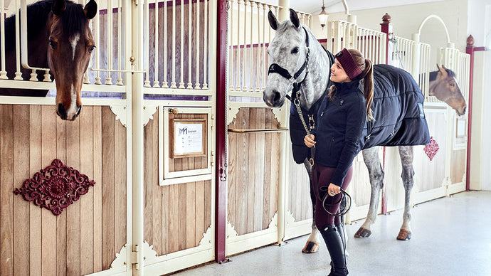 Winter products that every equestrian needs
