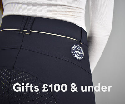 Gifts £100 and under