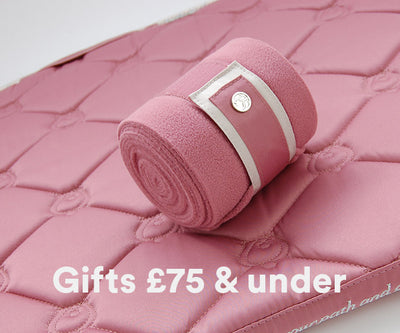Gifts £75 and under