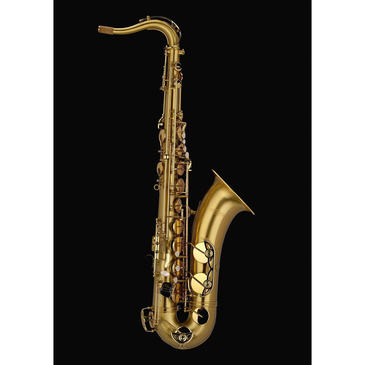 Schagerl - Academica Series - T-900 Tenor Saxophones-Saxophone-Schagerl-Brush Finish-Music Elements