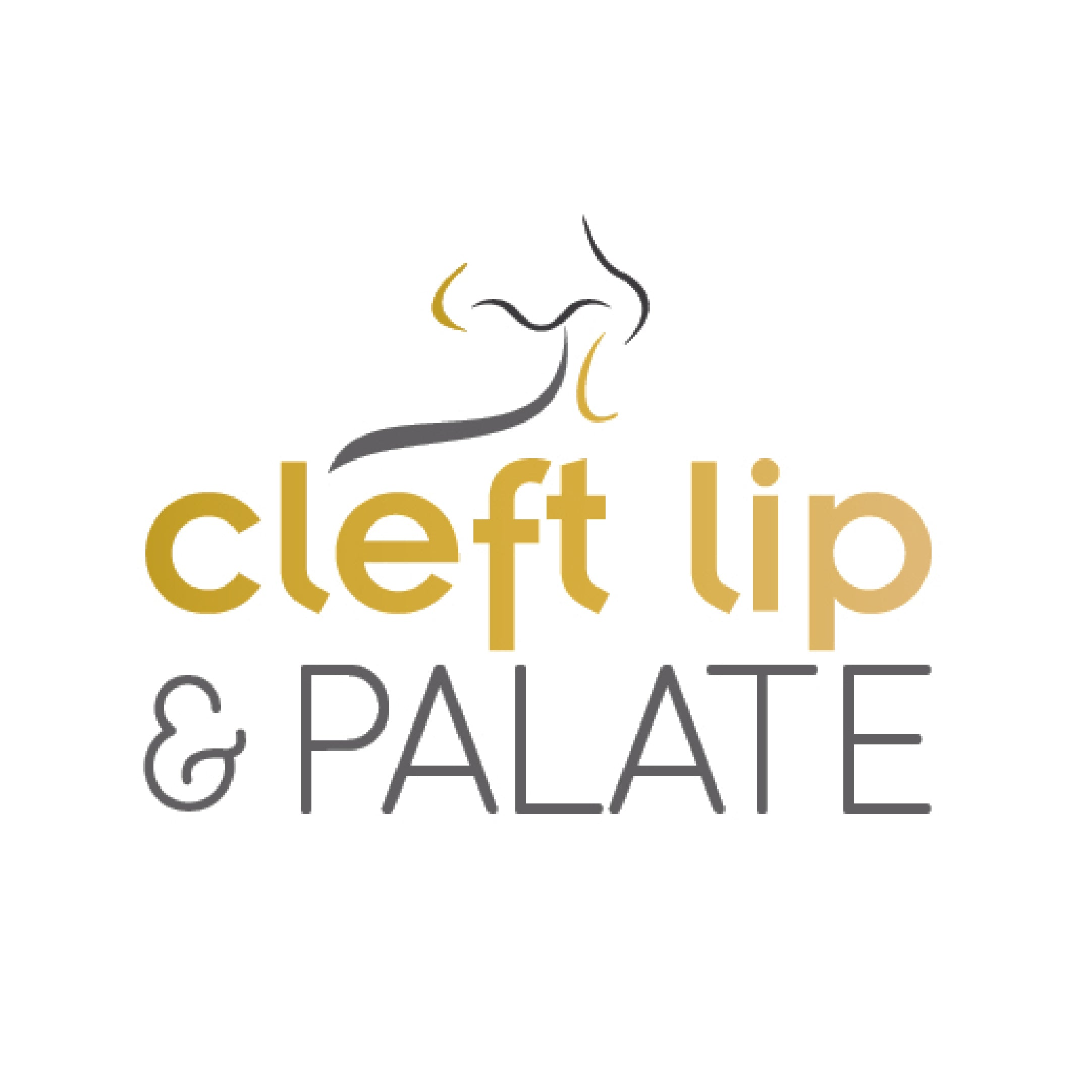 Cleft Awareness Stickers for Files