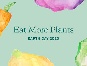 Why Eating More Plants Is Good for the Environment