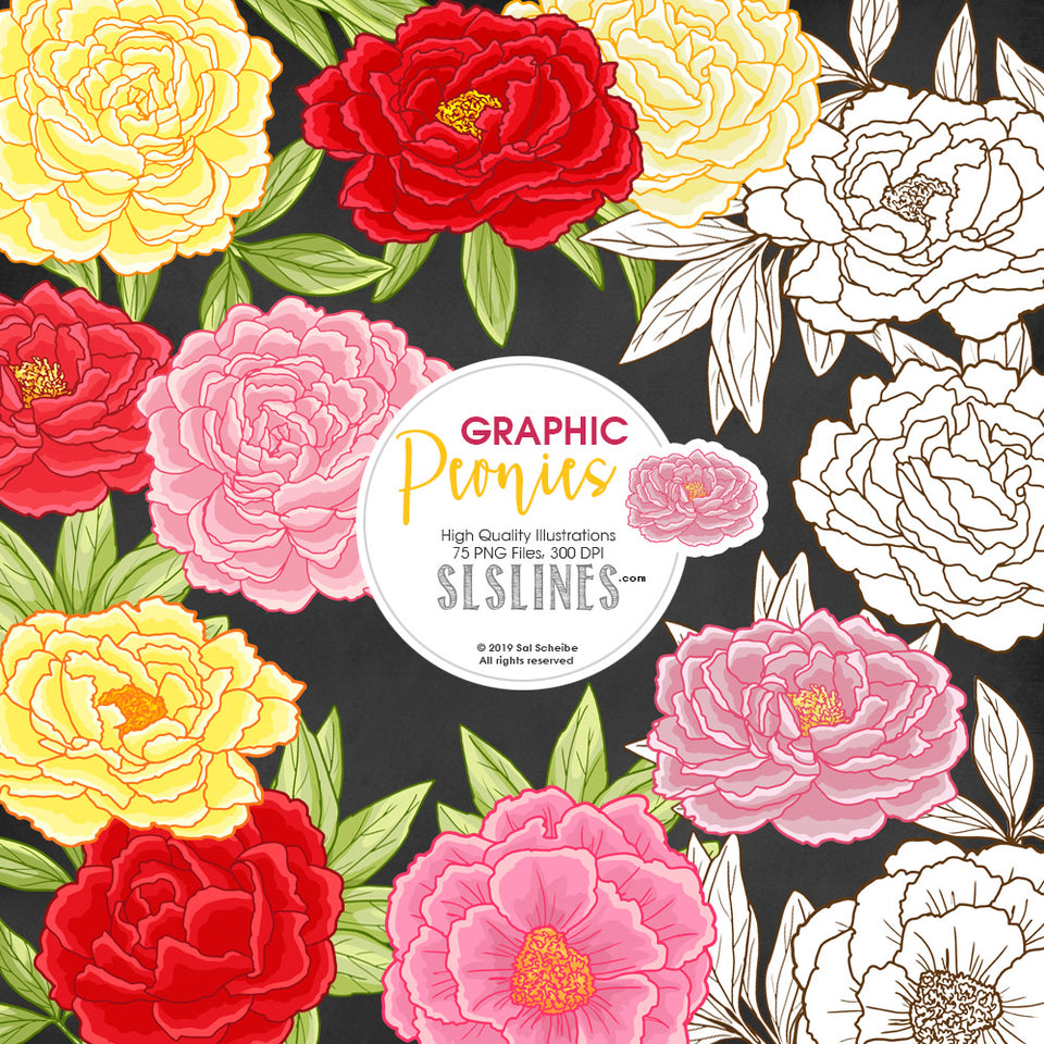 Peonies graphic clipart