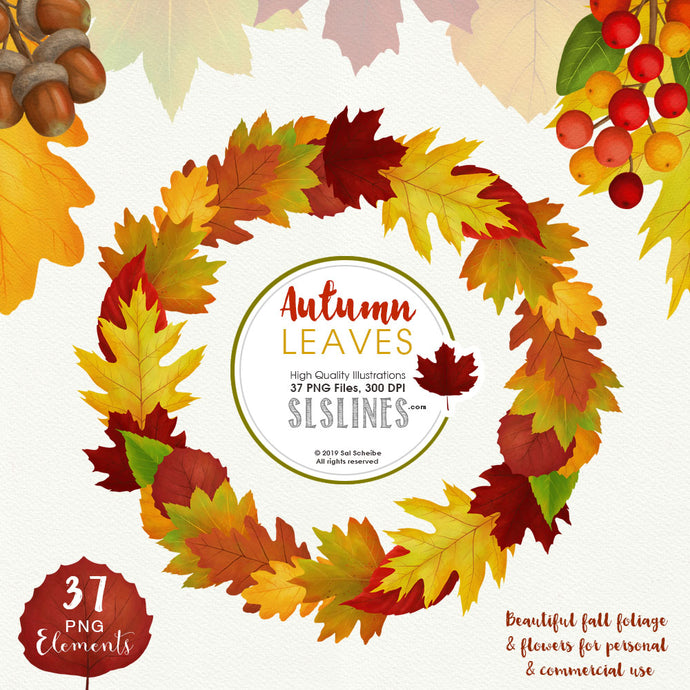 Autumn Leaves Fall Foliage Watercolor Clipart