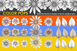 Vivid Pop Color Flowers Clipart Set - slslines