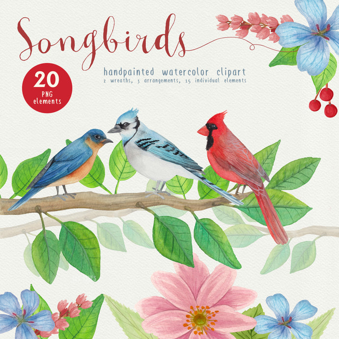 Song Birds Watercolor Clipart - slslines
