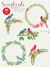 Load image into Gallery viewer, Song Birds Watercolor Clipart - slslines