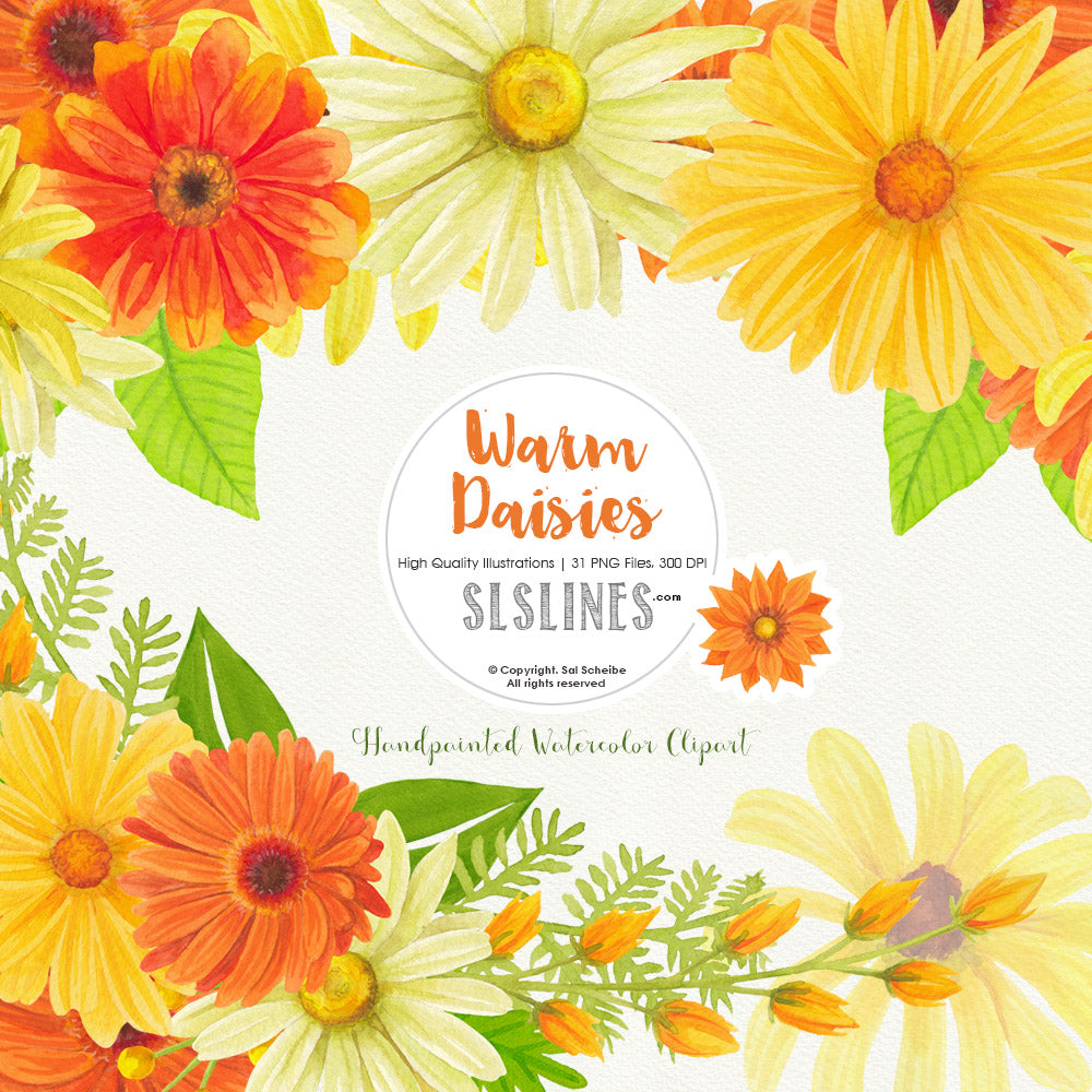Warm Daisies Watercolor Clipart Set - slslines
