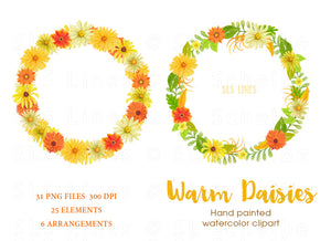 Warm Daisies Watercolor Clipart Set