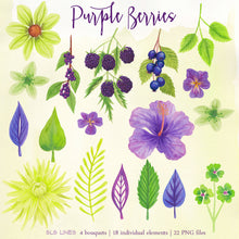 Load image into Gallery viewer, Purple Berries & Flowers Watercolor Clipart Set - slslines