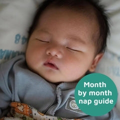 Month by month nap guide