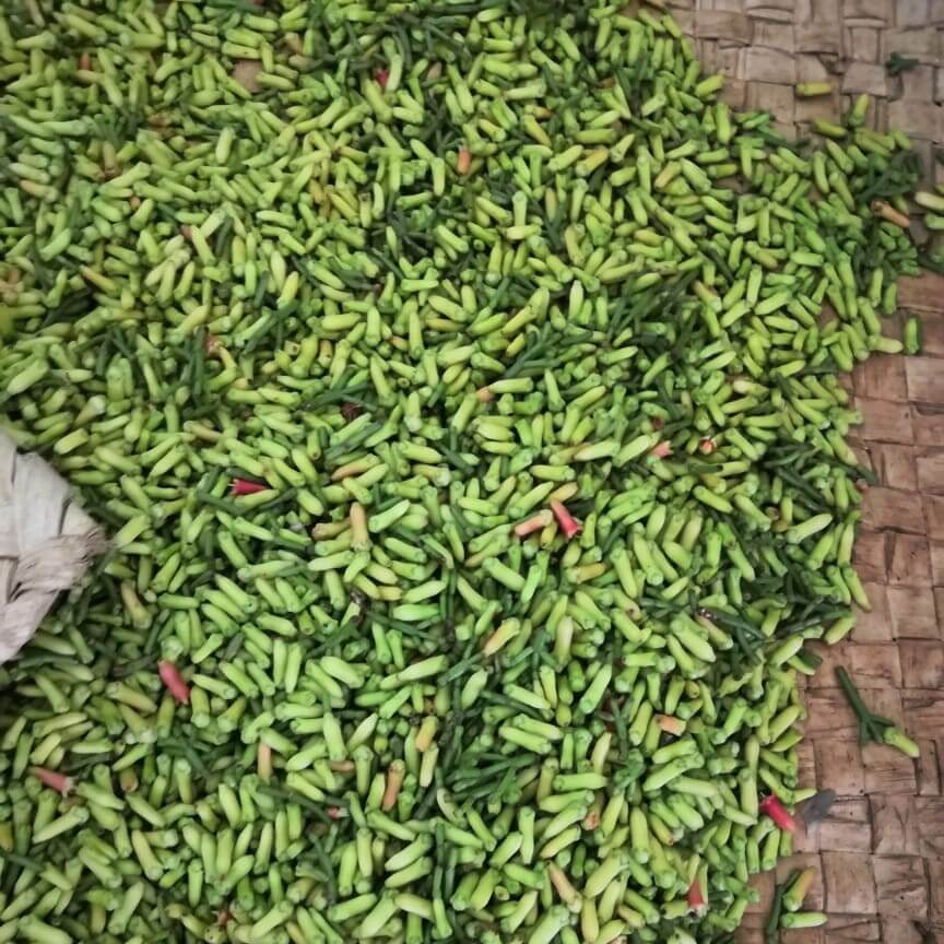 Cloves drying on a mat