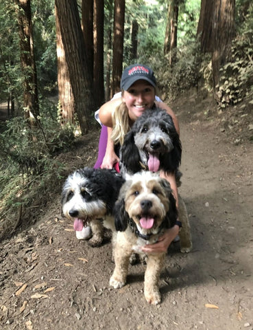 berne doodle, tahoe, dog, family picture, cute, hike
