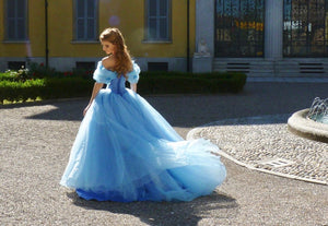 Cinderella Dress for Adults Cinderella Cosplay Costume