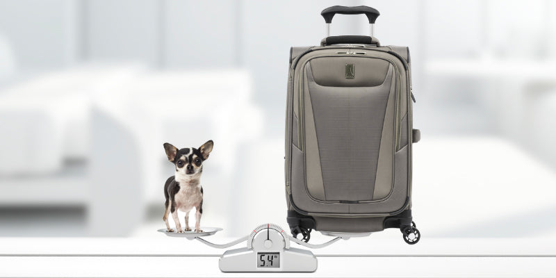 Image of a suitcase on a scale showcasing how lightweight it is